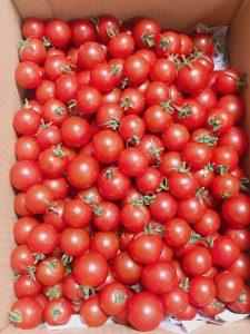 あつみちゃんトマト